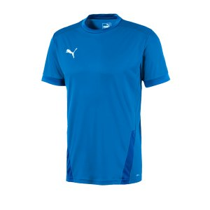 puma-teamgoal-23-trikot-kurzarm-kids-blau-f02-fussball-teamsport-textil-trikots-704160.png