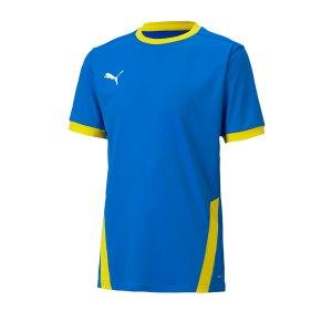 puma-teamgoal-23-trikot-kurzarm-kids-gelb-f16-fussball-teamsport-textil-trikots-704160.png