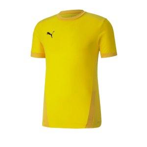 puma-teamgoal-23-trikot-kurzarm-kids-gelb-f07-fussball-teamsport-textil-trikots-704160.png
