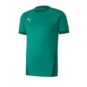 puma-teamgoal-23-trikot-kurzarm-gruen-f05-fussball-teamsport-textil-trikots-704171.png
