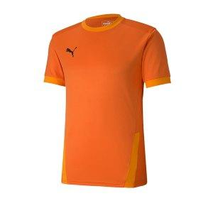 puma-teamgoal-23-trikot-kurzarm-orange-f08-fussball-teamsport-textil-trikots-704171.png
