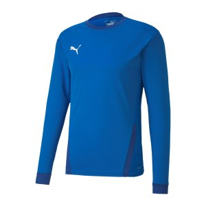 puma-teamgoal-23-trikot-langarm-blau-f02-704260-teamsport_front.png