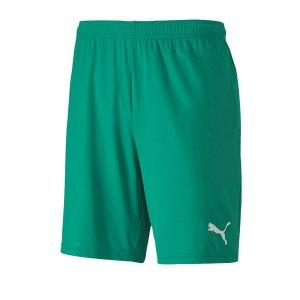 puma-teamgoal-23-knit-short-gruen-f05-fussball-teamsport-textil-shorts-704262.jpg