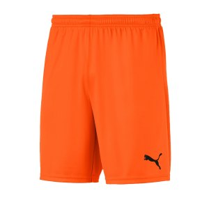 puma-teamgoal-23-knit-short-orange-f08-fussball-teamsport-textil-shorts-704262.png