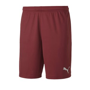 puma-teamgoal-23-knit-short-rot-f09-fussball-teamsport-textil-shorts-704262.png