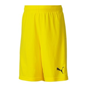 puma-teamgoal-23-knit-short-kids-gelb-f07-fussball-teamsport-textil-shorts-704263.png