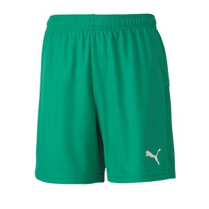 puma-teamgoal-23-knit-short-kids-gruen-f05-fussball-teamsport-textil-shorts-704263.png