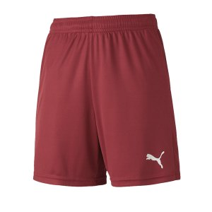 puma-teamgoal-23-knit-short-kids-rot-f09-fussball-teamsport-textil-shorts-704263.png