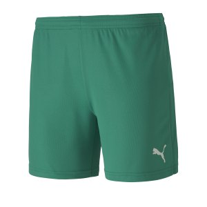puma-teamgoal-23-knit-shorts-damen-gruen-f05-fussball-teamsport-textil-shorts-704379.png