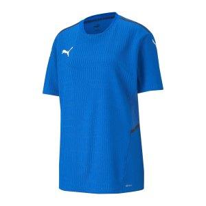 puma-teamcup-trikot-blau-f02-704386-teamsport_front.png