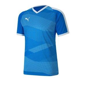 puma-teamfinal-indoor-trikot-kurzarm-blau-f02-fussball-teamsport-textil-trikots-704491.jpg