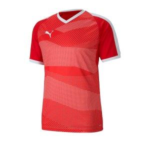 puma-teamfinal-indoor-trikot-kurzarm-rot-f01-fussball-teamsport-textil-trikots-704491.jpg