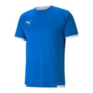 puma-teamliga-trikot-blau-f02-704917-teamsport_front.png
