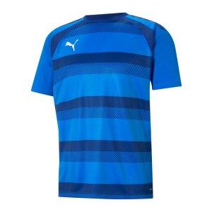 puma-teamvision-trikot-blau-f02-704921-teamsport_front.png