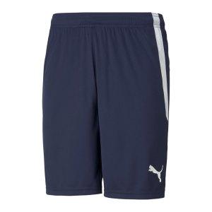puma-teamliga-shorts-blau-f06-704924-teamsport_front.png