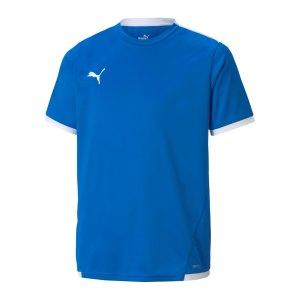 puma-teamliga-trikot-kids-blau-f02-704925-teamsport_front.png