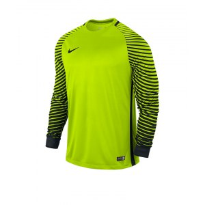 nike-gardien-trikot-langarm-sportbekleidung-langarmtrikot-men-herren-teamsport-gelb-f702-725882.jpg