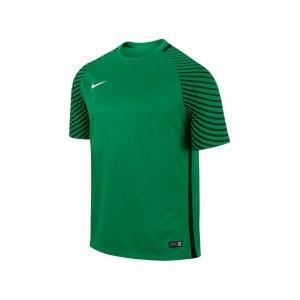 nike-gardien-trikot-kurzarm-kurzarmtrikot-sportbekleidung-vereinsausstattung-teamsport-men-herren-gruen-f319-725889.jpg