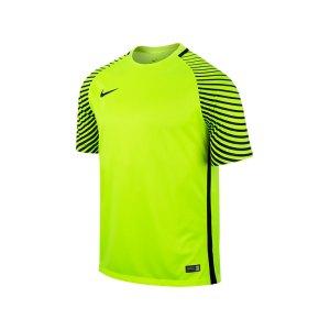 nike-gardien-trikot-kurzarm-kurzarmtrikot-sportbekleidung-vereinsausstattung-teamsport-men-herren-gelb-f702-725889.jpg