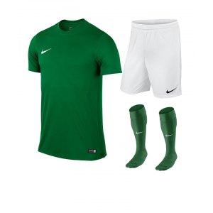 nike-park-vi-trikotset-teamsport-ausstattung-matchwear-spiel-f302-725891-725887-394386.jpg