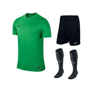 nike-park-vi-trikotset-teamsport-ausstattung-matchwear-spiel-f303-725891-725887-394386.jpg