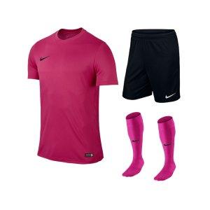 nike-park-vi-trikotset-teamsport-ausstattung-matchwear-spiel-f616-725891-725887-394386.jpg