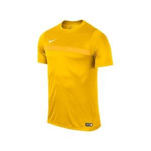 nike-academy-16-trainingstop-kurzarm-shirt-teamsport-vereine-men-herren-gelb-weiss-f739-725932.jpg