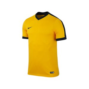 nike-striker-4-trikot-kurzarm-spielertrikot-mannschaft-verein-teamsport-kinder-children-kids-gelb-f739-725974.png