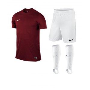 nike-park-vi-trikotset-teamsport-ausstattung-matchwear-spiel-kids-f677-725984-725988-507819.jpg