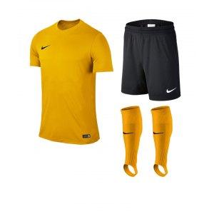 nike-park-vi-trikotset-teamsport-ausstattung-matchwear-spiel-kids-f739-725984-725988-507819.jpg