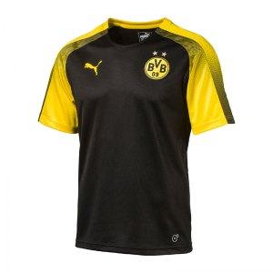 puma-bvb-dortmund-stadium-trainingsshirt-f01-trainingsoberteil-kurzarm-fanshop-borussia-schweissabtragend-funktionsshirt-herren-751763.jpg