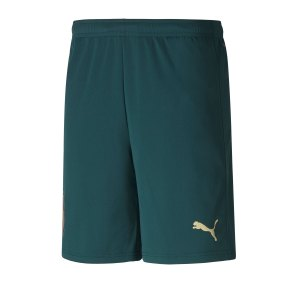 puma-italien-third-short-em-2020-gruen-f03-replicas-shorts-nationalteams-756441.png