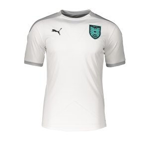 puma-oesterreich-trainingstrikot-weiss-f02-replicas-t-shirts-nationalteams-757124.png