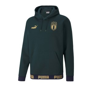 puma-italien-ftblculture-hoody-gruen-f03-replicas-sweatshirts-nationalteams-757247.png