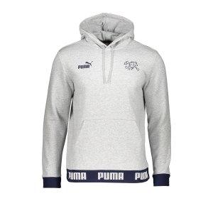 puma-schweiz-ftblculture-hoody-grau-f14-replicas-sweatshirts-nationalteams-757356.jpg