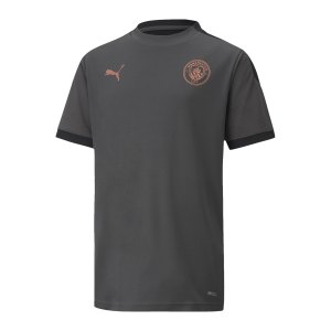puma-manchester-city-trainingstrikot-kids-f13-757879-fan-shop_front.png