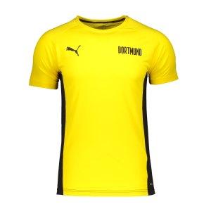 puma-bvb-dortmund-evostripe-t-shirt-gelb-f01-758573-fan-shop_front.png