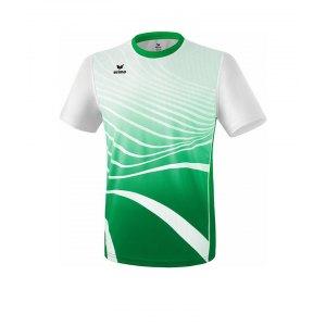 erima-t-shirt-running-gruen-weiss-laufbekleidung-ausdauersport-shortsleeve-kurzarm-joggingequipment-8081809.png