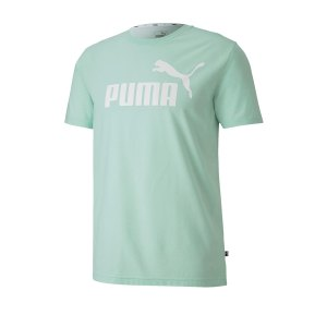 puma-essential-heather-t-shirt-gruen-f32-fussball-teamsport-textil-t-shirts-852419.png
