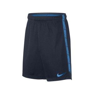nike-dry-squad-fussballshort-kids-blau-f452-equipment-fussball-mannschaftsausruestung-teamsport-trainingskleidung-matchwear-spieleroutfit-859912.png