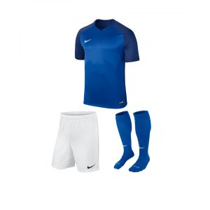 nike-trophy-iii-trikotset-blau-weiss-f463-equipment-teamsport-fussball-kit-ausruestung-vereinskleidung-881484-trikotset.jpg