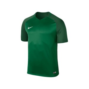 nike-trophy-iii-dry-team-trikot-kurzarm-kids-f302-trikot-kinder-shortsleeve-kids-fussball-training-spiel-881484.png