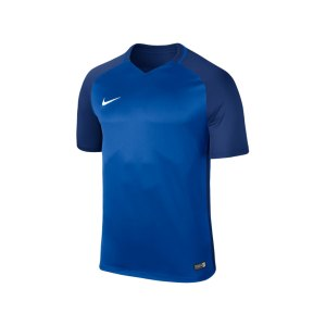 nike-trophy-iii-dry-team-trikot-kurzarm-kids-f463-trikot-kinder-shortsleeve-kids-fussball-training-spiel-881484.png