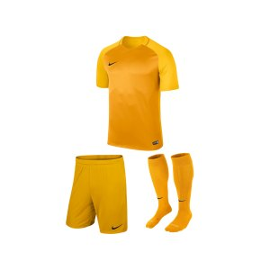 nike-trophy-iii-trikotset-kids-gelb-f739-equipment-teamsport-fussball-kit-ausruestung-vereinskleidung-881484-trikotset.jpg