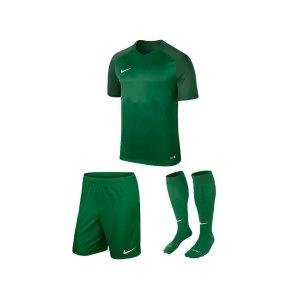 nike-trophy-iii-trikotset-kids-gruen-f302-equipment-teamsport-fussball-kit-ausruestung-vereinskleidung-881484-trikotset.png
