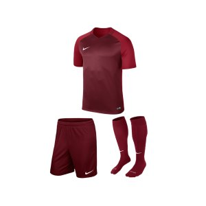 nike-trophy-iii-trikotset-kids-rot-f677-equipment-teamsport-fussball-kit-ausruestung-vereinskleidung-881484-trikotset.jpg