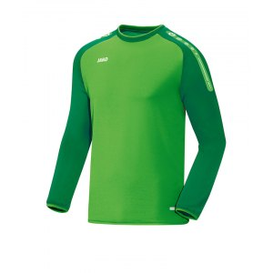 jako-champ-sweathshirt-gruen-f22-trainingstop-sweater-trainingsshirt-teamausstattung-8817.png