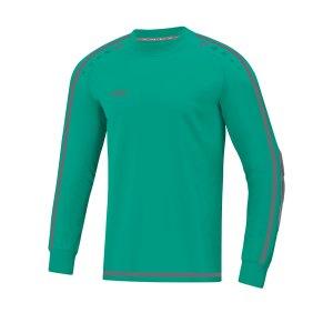 jako-striker-2-0-torwarttrikot-tuerkis-grau-f24-fussball-teamsport-textil-torwarttrikots-8905.png