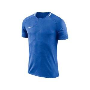 nike-dry-challenge-ii-trikot-kurzarm-f436-trikot-kurzarm-shirt-fussball-mannschaftssport-ballsportart-893964.jpg