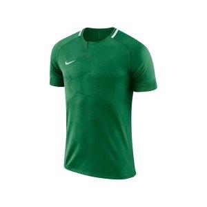 nike-dry-challenge-ii-trikot-kurzarm-f341-trikot-kurzarm-shirt-fussball-mannschaftssport-ballsportart-893964.png